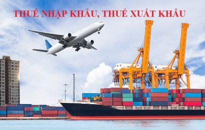 Tìm hiểu về thuế xuất nhập khẩu