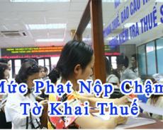 nop-cham-thue-mon-bai
